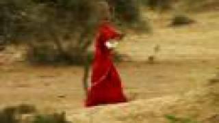 getlinkyoutube.com-The Living Desert