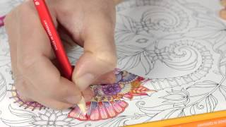 getlinkyoutube.com-Tutorial : How to Colour a Seahorse