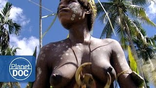 getlinkyoutube.com-Women Crocodile in Papua New Guinea | World Curiosities