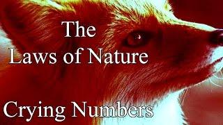 "getlinkyoutube.com-""Crying Numbers"" by Ashley Franz Holzmann | MrCreepyPasta's Storytime"