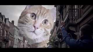 Catzilla - Trailer Parody of Godzilla [HD]