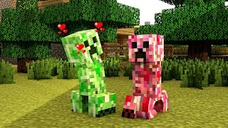 getlinkyoutube.com-A Vida de Um Creeper Minecraft Animação // The Life of a Creeper Minecraft Animation