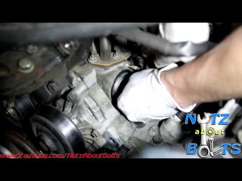 1998-2008 Toyota Corolla Thermostat remove and install