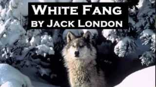 White Fang by Jack London - FULL Audio Book - Adventure Fiction width=