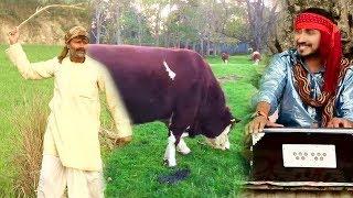 खेतवा तS चरी गईले सधवा - Khetawa Ta Chari Gaile Sadhwa - Pravesh Pritam - Bhojpuri Hit Songs 2018