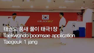 태권도 품새 풀이 태극1장 - Taekwondo poomsae application Taegeuk 1 jang
