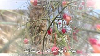 getlinkyoutube.com-جی هَلو هَالو مَنی بلوچستان - وهاب بلوچ