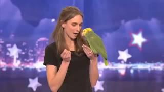 getlinkyoutube.com-Parrot singing Over the Rainbow
