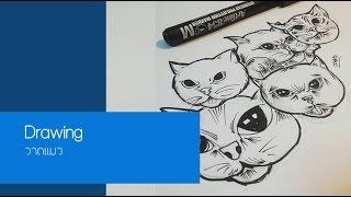 getlinkyoutube.com-สอนการวาดแมว