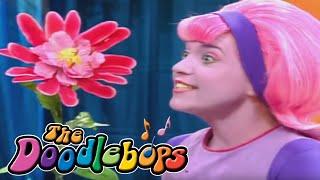 getlinkyoutube.com-The Doodlebops: The Ewww Flower (Full Episode)