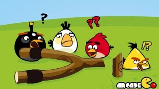 getlinkyoutube.com-Angry Birds Go Crazy - Angry Birds Eggs Saving Adventure