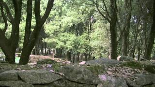 getlinkyoutube.com-Lo Yeti dìOgliastra, seconda puntata