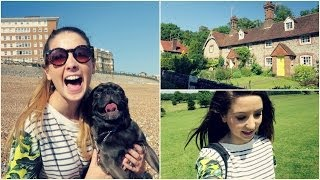 getlinkyoutube.com-Summer Lunch & Pug Walking