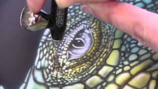 getlinkyoutube.com-Airbrush Tutorial: Iguana Stencil Harder & Steenbeck Airbrush Anleitung