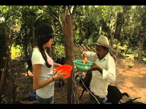 Discovery Channel la siembra de hortalizas en Mexico