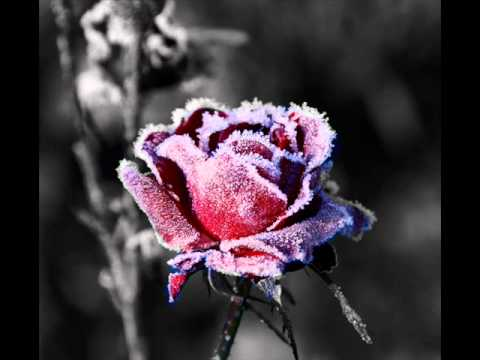 &quot;Winter Rose&quot; Sad Inspiring Epic Solo Violin Choir Beat