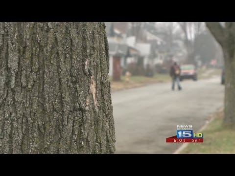 Neighbors react to latest homicide