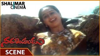 Narasimhudu || Sarath Kumar Jump Into waterfall For Devayani  Scene || Sarath Kumar,Ramya Krishna width=