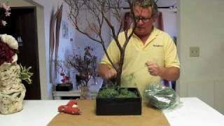 Manzanita Branch Centerpieces How-To #1