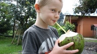 How to Drink a Coconut and Why You Should