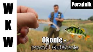 getlinkyoutube.com-Okonie - prosto i skutecznie | Poradnik wędkarski | Wędkarstwo Spinningowe |Odcinek 1