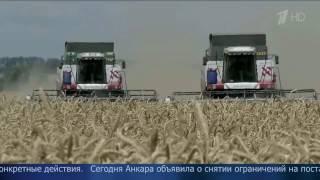 Анкара сняла ограничения на поставки российской пшеницы