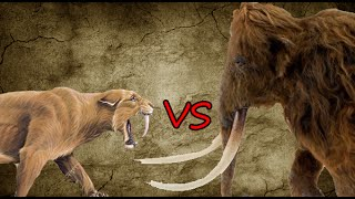 getlinkyoutube.com-Saber-Toothed Tiger Pride vs Woolly Mammoth