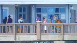 getlinkyoutube.com-Nikon Coolpix P900 Zoom Test - Clearwater Beach, FL - Crazy
