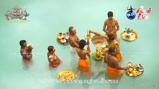நல்லூர் ஸ்ரீ கந்தசுவாமி கோவில் 25ம் திருவிழா காலை தீர்த்தத்திருவிழா 18.08.2020