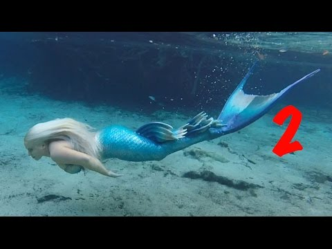BILL'S AMAZING SWIM WITH A MERMAID 2