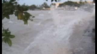 getlinkyoutube.com-Shocking Footage of the 2011 Tsunami Hitting Hawaii