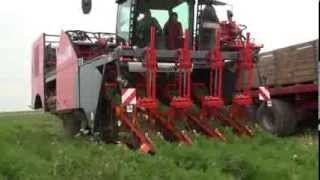 getlinkyoutube.com-Dewulf ZKIV - 4-row self-propelled carrot harvester