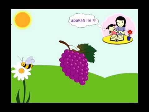 Mari Belajar Mengenal Buah buahan