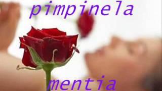 getlinkyoutube.com-pimpinela - mentia.wmv