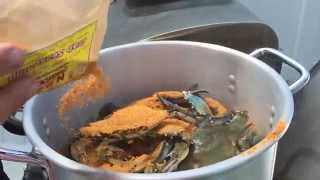 getlinkyoutube.com-How to Steam Blue Crabs Maryland Style