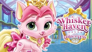 getlinkyoutube.com-Palace Pets in Whisker Haven (Disney) - Dress Up Time with Rouge - Best App For Kids