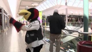 "getlinkyoutube.com-AHL Mascot Tux Answers ""The Ellen Degeneres Show"" Dance Dare"