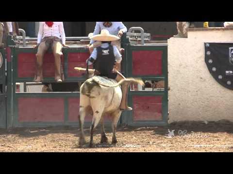 Mejores Montas de Toro - XII Circuito Excelencia Charra 2013