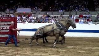 getlinkyoutube.com-Preview of several horsepulls.mp4