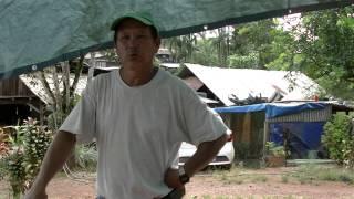 getlinkyoutube.com-13. 04. 2015 Hmoob Guyane ua Hmoov lwm tsib, Fêtes des ramboutans