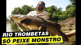 Programa Pesca Pará, rio Trombetas, trairão e peixe de couro.