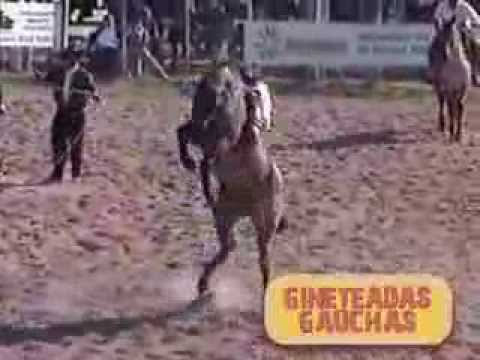 4° Encontro Internacional de Tropilhas e Ginetes - DVD - Gineteadas Gauchas - Vol 1