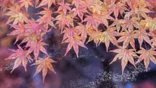 getlinkyoutube.com-Romance - Yuhki Kuramoto