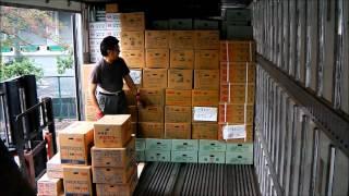 getlinkyoutube.com-トラックの積み込み風景in東京多摩青果市場