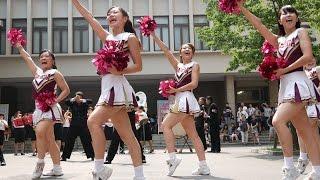 getlinkyoutube.com-Cheerleading チア 早稲田必勝応援曲メドレー(魁~大進撃~SUNRISE~スパークリングマーチ~コンバットマーチ) 早稲田大学応援部チアリーダーズ 2015夏