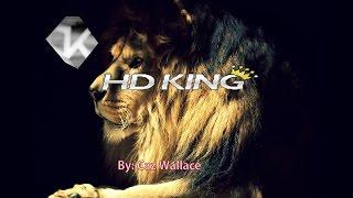 getlinkyoutube.com-HD King LiveTV (720p,1080p & 4k Channels) Sep 25th, 2015