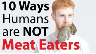 getlinkyoutube.com-10 Ways Humans are NOT natural Meat Eaters