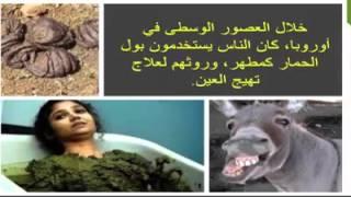 getlinkyoutube.com-لماذا حرم الله لحم الحمار؟