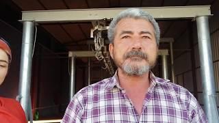 Nevşehir'de Kurbanlıklar ÖzkaramanoğluBesi Çiftliği'nden alınır...