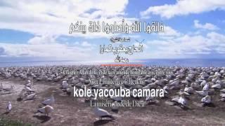 kole yacouba camara  -  الحاج - يعقوب كمارا width=